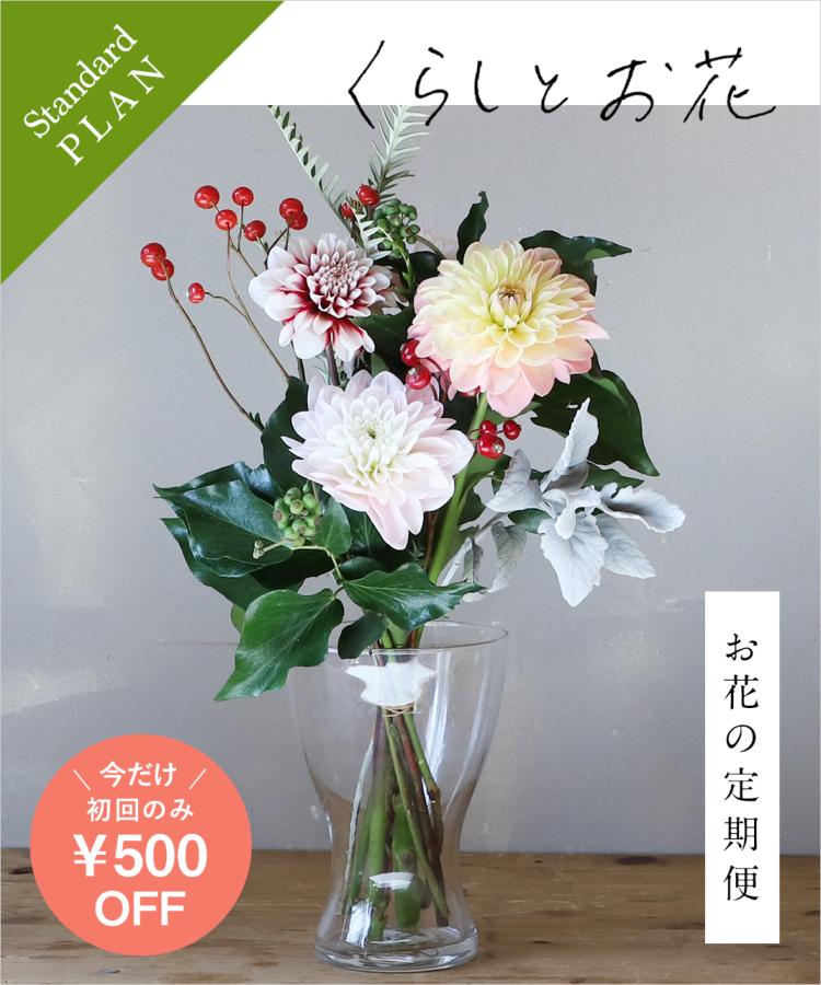 お花の定期便 / オリジナルポストカード付き standard01