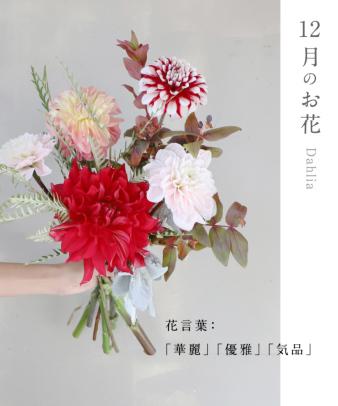 お花の定期便 / オリジナルポストカード付き standard02