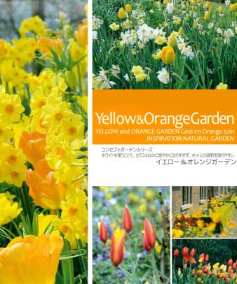 mumokuteki / 球根Garden Set イエロー&オレンジ01/ ギフトパック_7